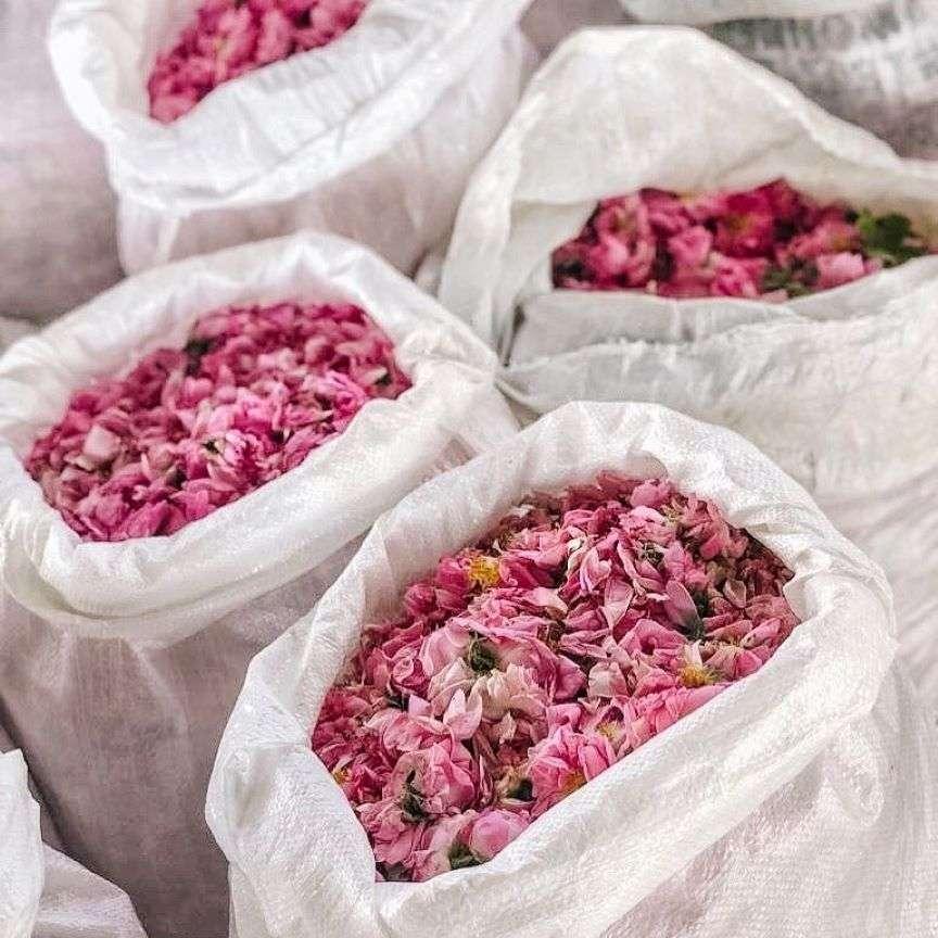 fioriture più belle