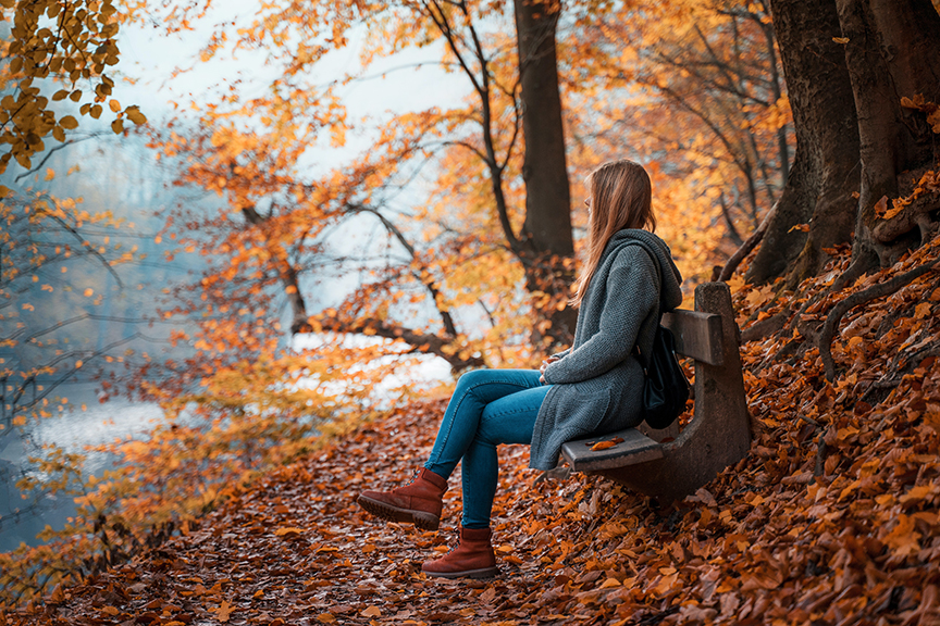 Le foglie e i colori dell'autunno