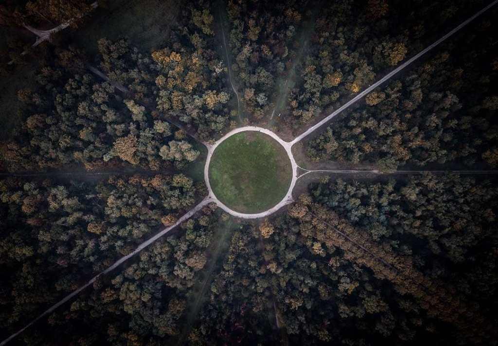 Foresta autunnale vista dell'alto