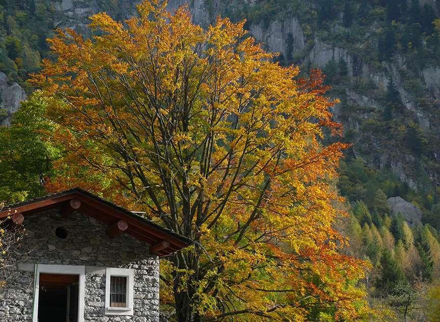 Val di Mello in autunno