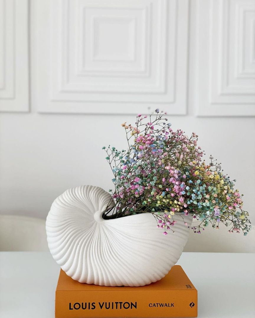 gipsofila colorata