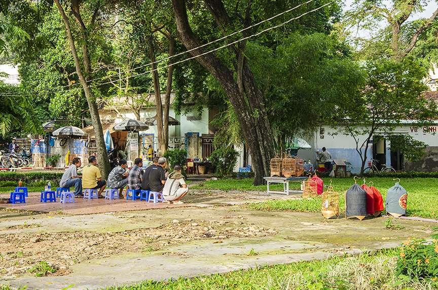 Curiosità Vietnam al parco