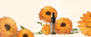 Natural Skincare 2