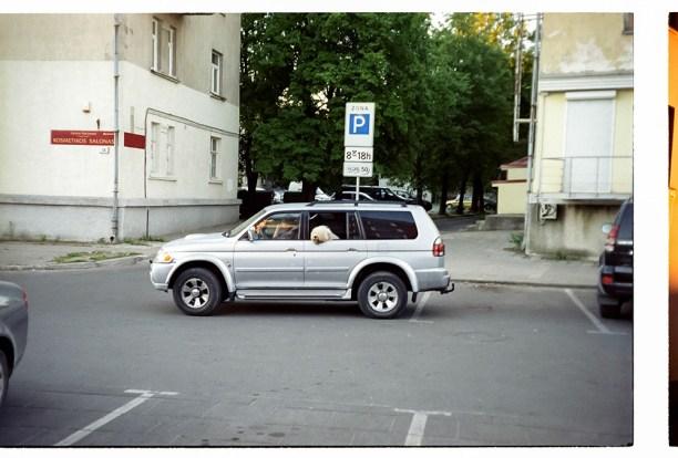 leto-2013-03-012
