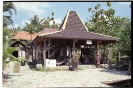 yogya-bird-market-034