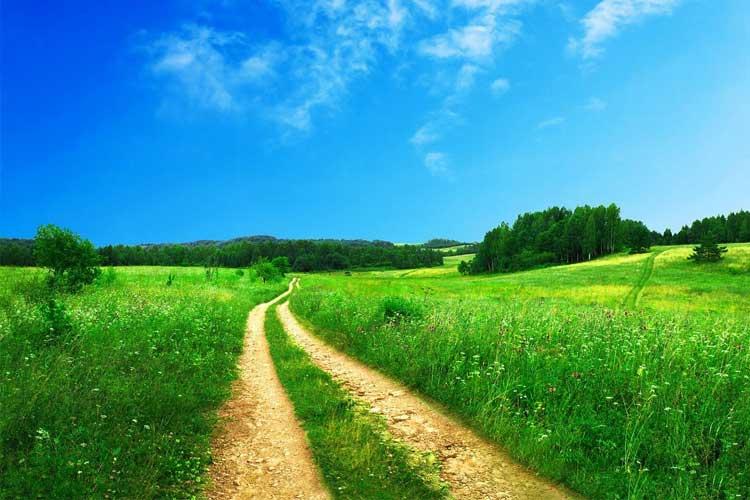 """Ésaïe 55 :8-9 « Car Mes pensées ne sont pas vos pensées, Et vos voies ne sont pas Mes voies, Dit l'Éternel. Autant les cieux sont élevés au-dessus de la terre, Autant Mes voies sont élevées au-dessus de vos voies, Et Mes pensées au-dessus de vos pensées. » Le Seigneur dit """"—N'oubliez pas d'écouter Ma voix. Toutes choses concourent au bien de ceux que j'aime. Je place toutes bonnes choses pour chacun de Mes enfants, mais il vous faut écouter et marcher dans Mes voies."""""""