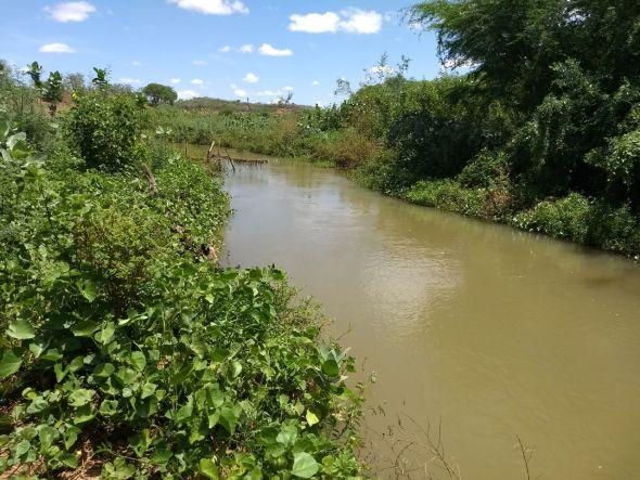 Projeto recuperará mata ciliar do Rio Paraíba, no Cariri