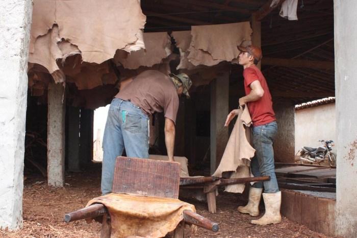 Cooperativa de Couro no Cariri renova esperanças e traz filhos de volta ao lar