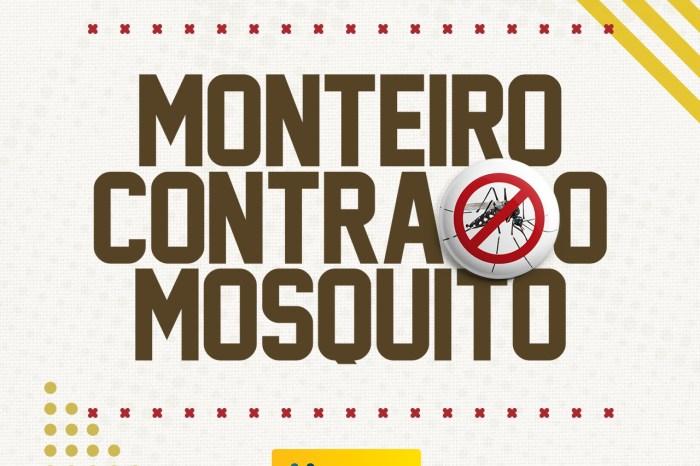 Chuvas constantes aumentam a importância do combate ao mosquito aedes aegipty
