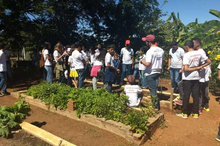 Prefeitura de Sumé distribui mudas de Imbuzeiro e convida a população para se cadastrar