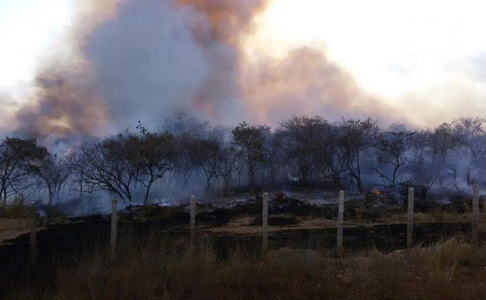 Novo incêndio e de grandes proporções é registrado entre Serra Branca e Coxixola