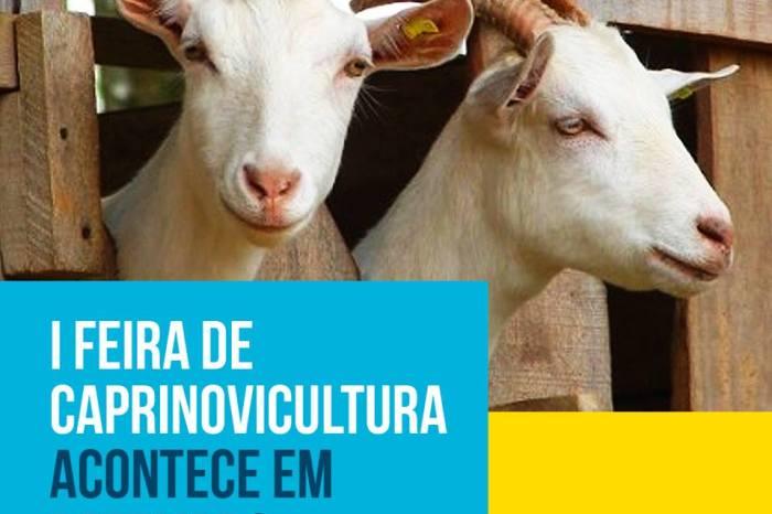 Monteiro se prepara para receber a I Feira de Caprinovinocultura de 05 a 09 de dezembro