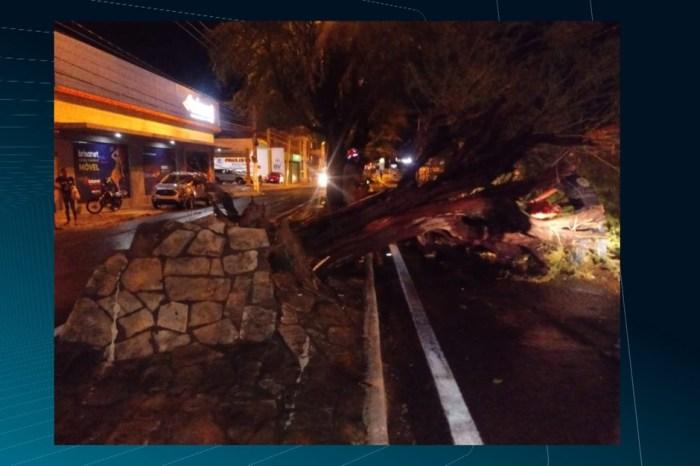 Chuva e ventos fortes derrubam árvores e antena de rádio em Patos