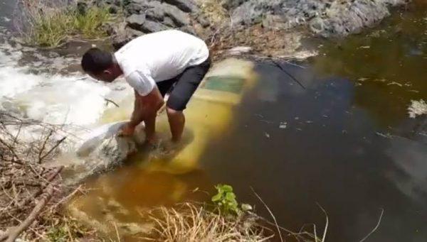 Denúncia: Moradores de São Domingos estariam fazendo barramentos no Rio Paraíba