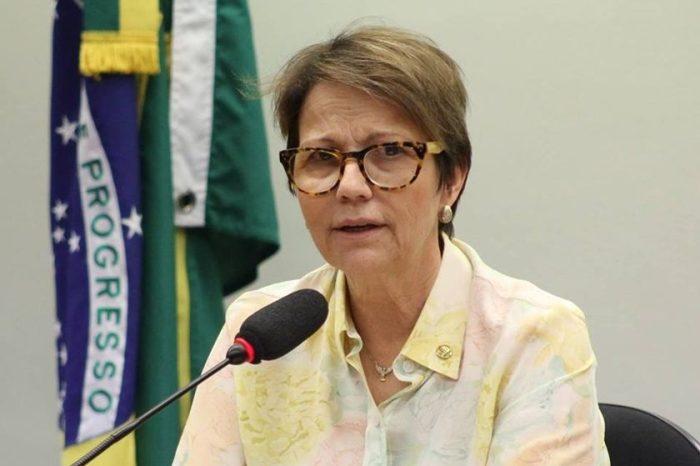 Ministra da Agricultura visita Cariri paraibano para conhecer criações de caprinos