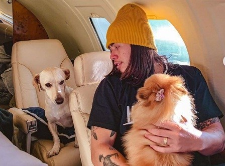 Whindersson Nunes viaja com cachorras em jatinho particular