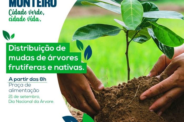 Eco Monteiro promove ações de conscientização ambiental com entrega de mudas
