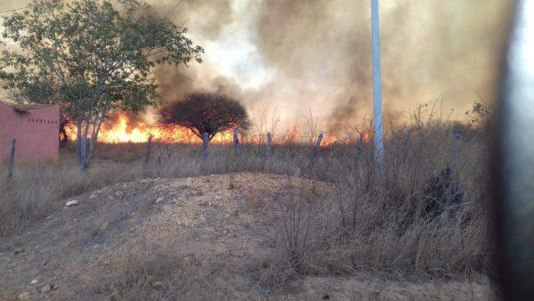 Incêndio de grandes proporções atinge a zona rural de Monteiro; fogo está sendo controlado