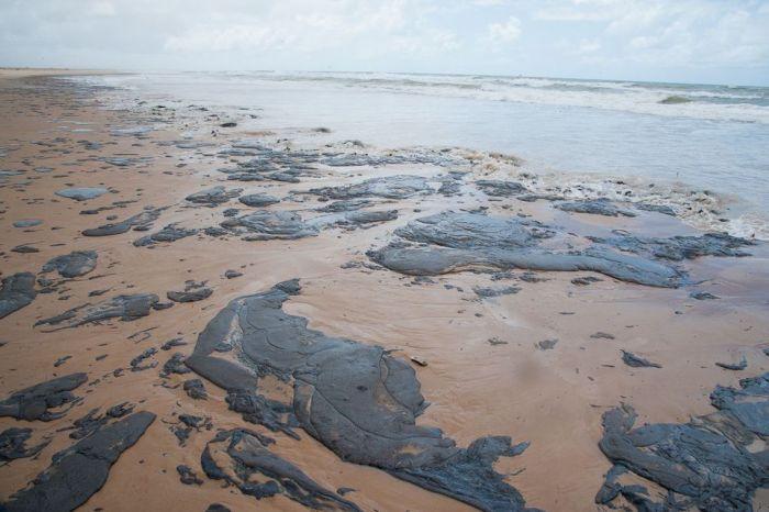 Brasil confirma que óleo poluindo Nordeste é da Venezuela