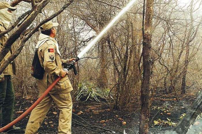 Em Monteiro: Incêndio continua devastando zona rural e equipes tentam controlar o fogo