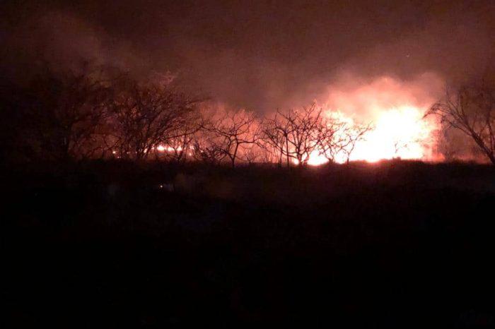 Após horas de fogo, incêndio de grandes proporções é controlado na zona rural de Serra Branca