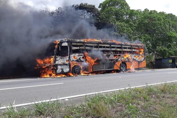 Ônibus com 30 passageiros pega fogo em trecho da BR-230