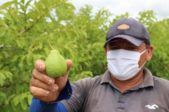 Programa de Aquisição de Alimentos seleciona agricultores na PB
