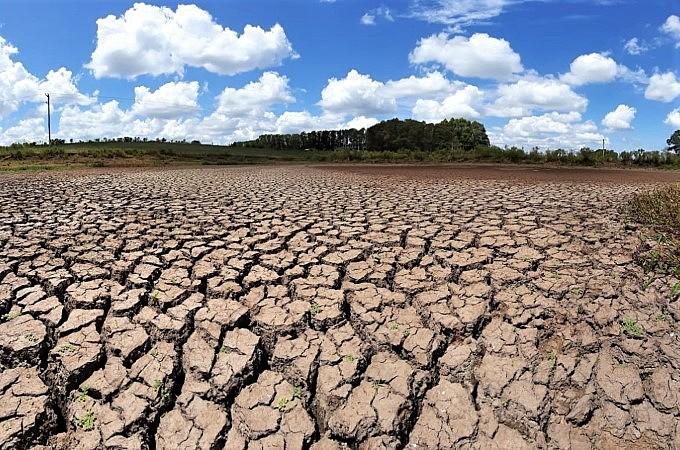 Estudo revela impactos da desertificação na PB; Cariri é a área com mais danos no estado