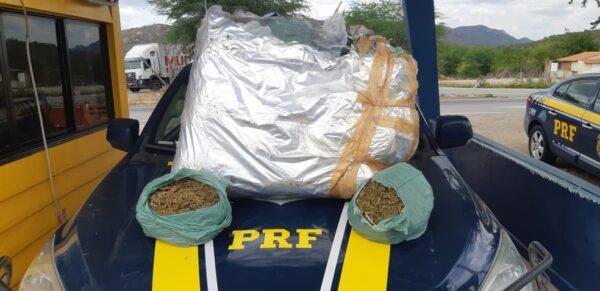 Casal de caririzeiros é detido com 20 Kg de maconha durante abordagem em Sertânia
