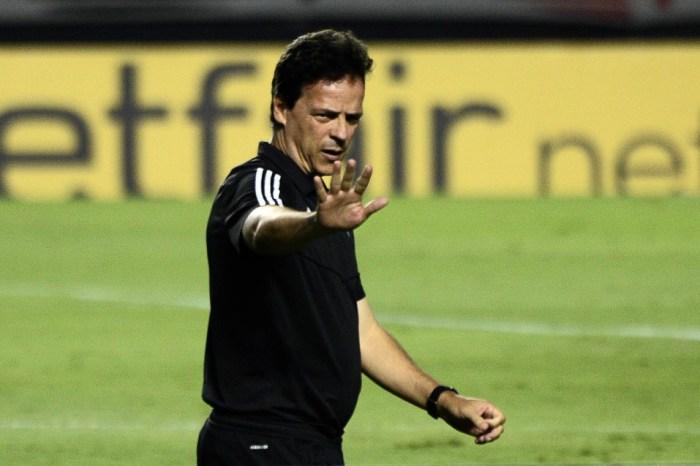 Nome de Fernando Diniz ganha força no Santos para substituir Ariel Holan