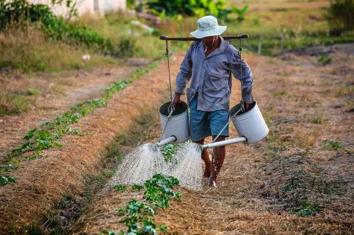 Governo lança editais do Paraibatec Agricultura Familiar com mais de duas mil vagas
