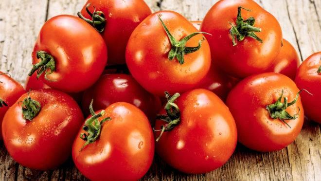 Municípios do Cariri foram os maiores produtores de tomate da Paraíba em 2020
