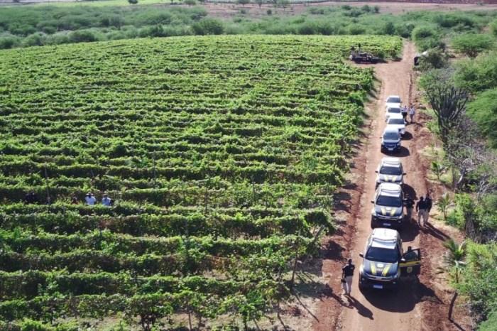 Operação flagra trabalhadores em situação análoga à escravidão em cidade do Cariri