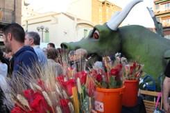 Entxuscat Sant Jordi 2013