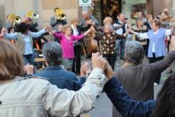 Sardanes Sant Jordi 2013