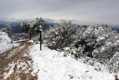 Zona nevada a Collserola // Jose Polo