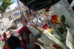 Roses al Pati del Palau // Jose Polo