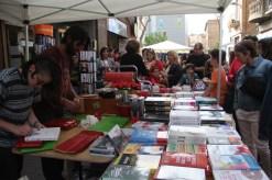 Sant Jordi 2018 JORDI JULIA VIU MOLINS DE REI (5)