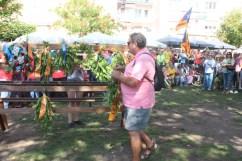 Diada Nacional de Catalunya Viu Molins de Rei 2018 (79)