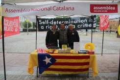 Sant Jordi 2019 Viu Molins de Rei (2)