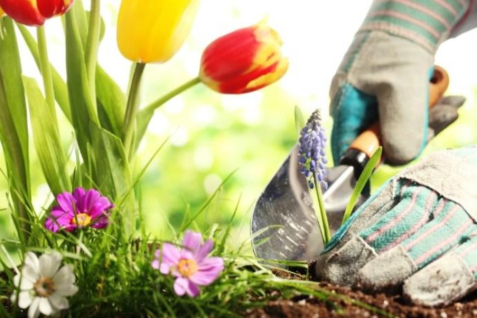 La jardinería es una afición relajante.