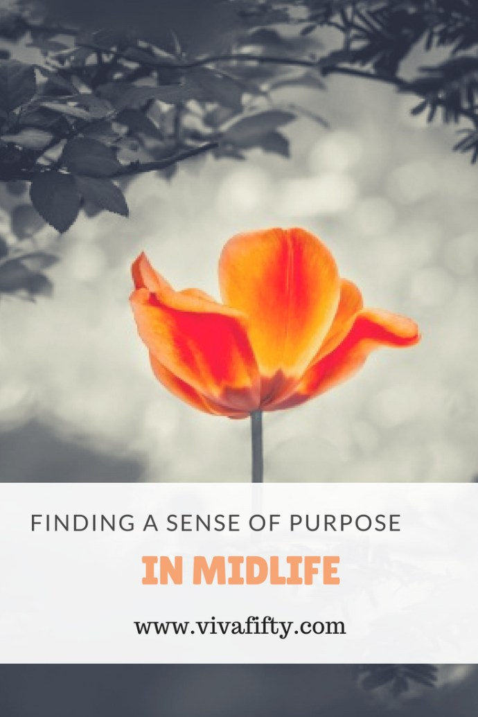 Finding a sense of purpose in #midlife can feel daunting but it doesn't have to be. Here are some tips to help.