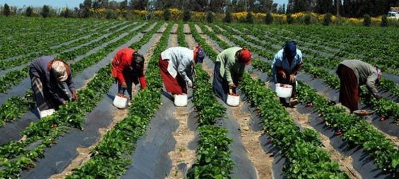 """Résultat de recherche d'images pour """"agriculteurs africains"""""""