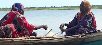 ONU Info/Dan Dickinson Les femmes pêcheuses du lac Tchad ont reçu de nouveaux filets de la part du Programme des Nations Unies pour le développement (PNUD) afin de pouvoir attraper davantage de poissons.