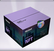 Sistemi NFT