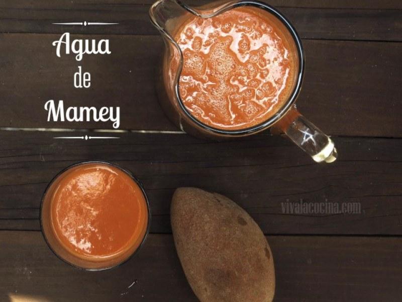 receta de agua de mamey casera