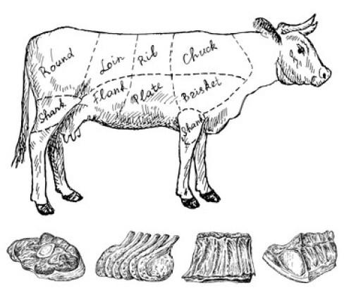 Despiece carne de res o ternera (vaca)