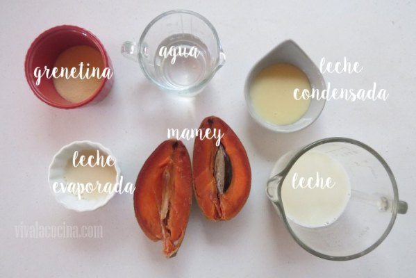 Ingredientes de Gelatina de Mamey