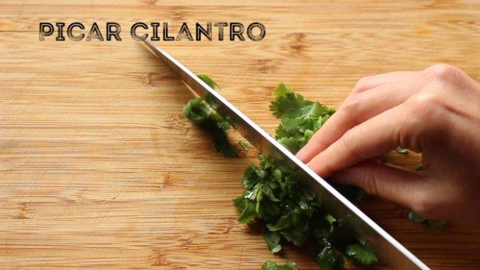 cilantro para hacer quesadillas