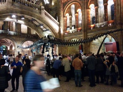 Night at the Natural History Museum